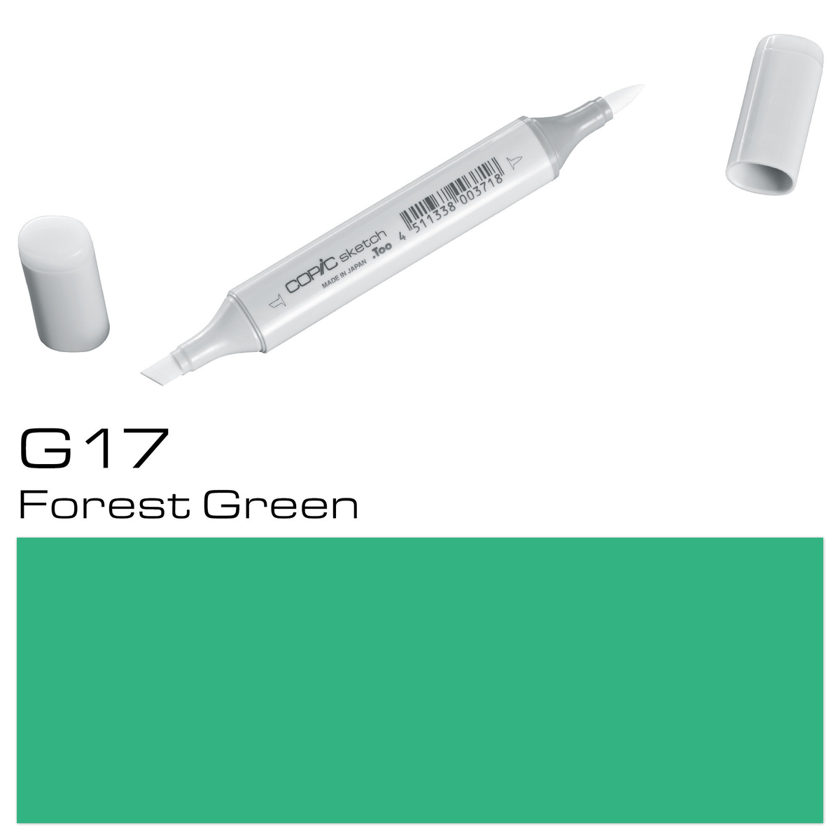 Copic Sketch G 17 forest green