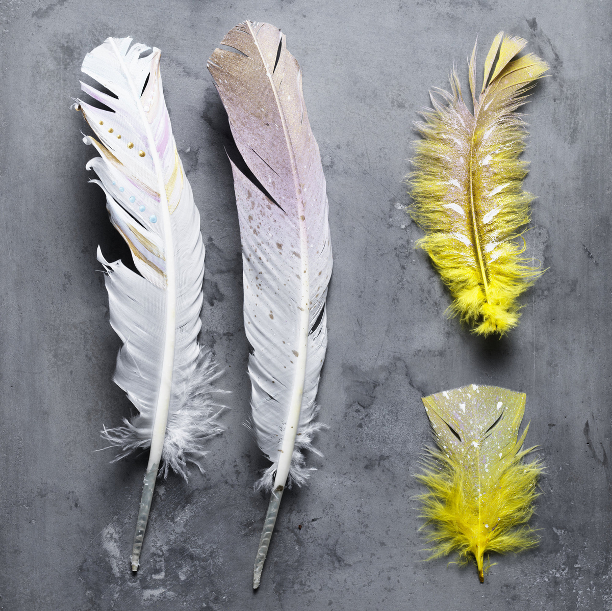 Add colour to feathers